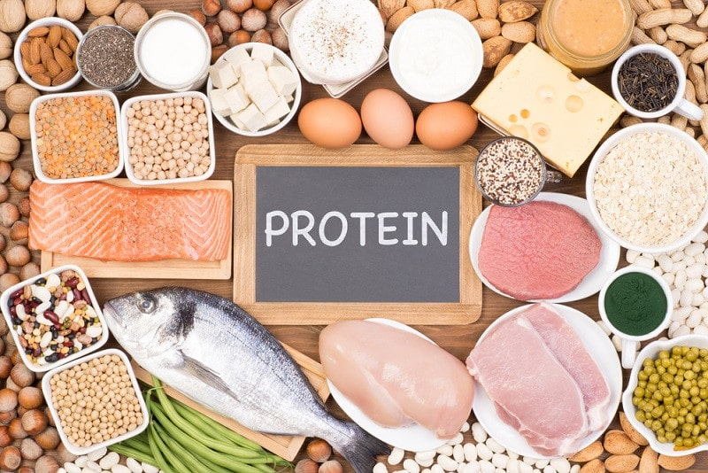 Eat More Proteins